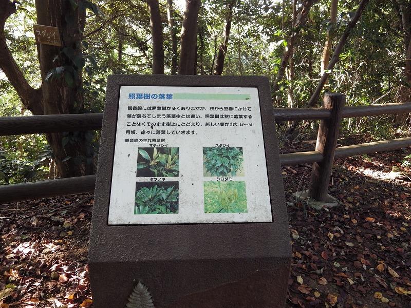 植物に関する案内板