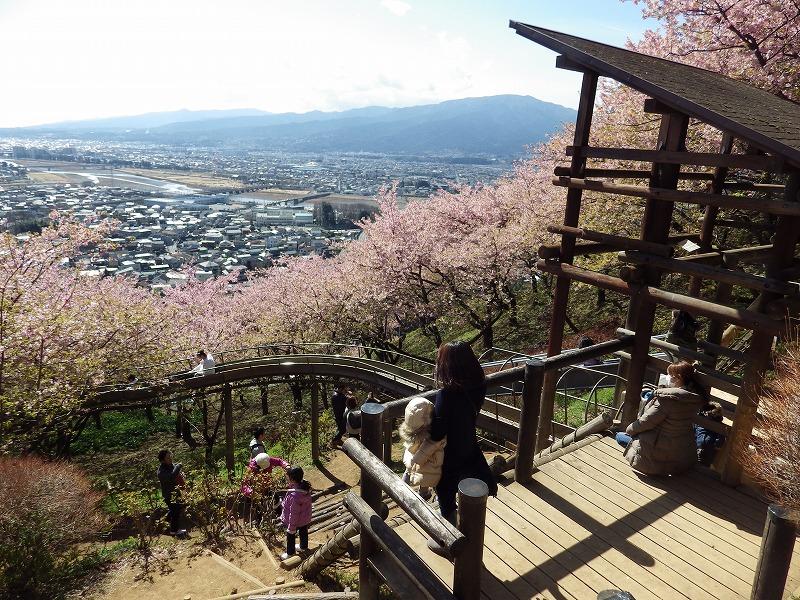 松田山のローラー滑り台