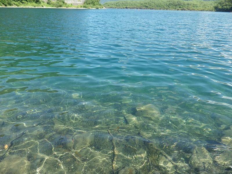 西湖の澄んだ水