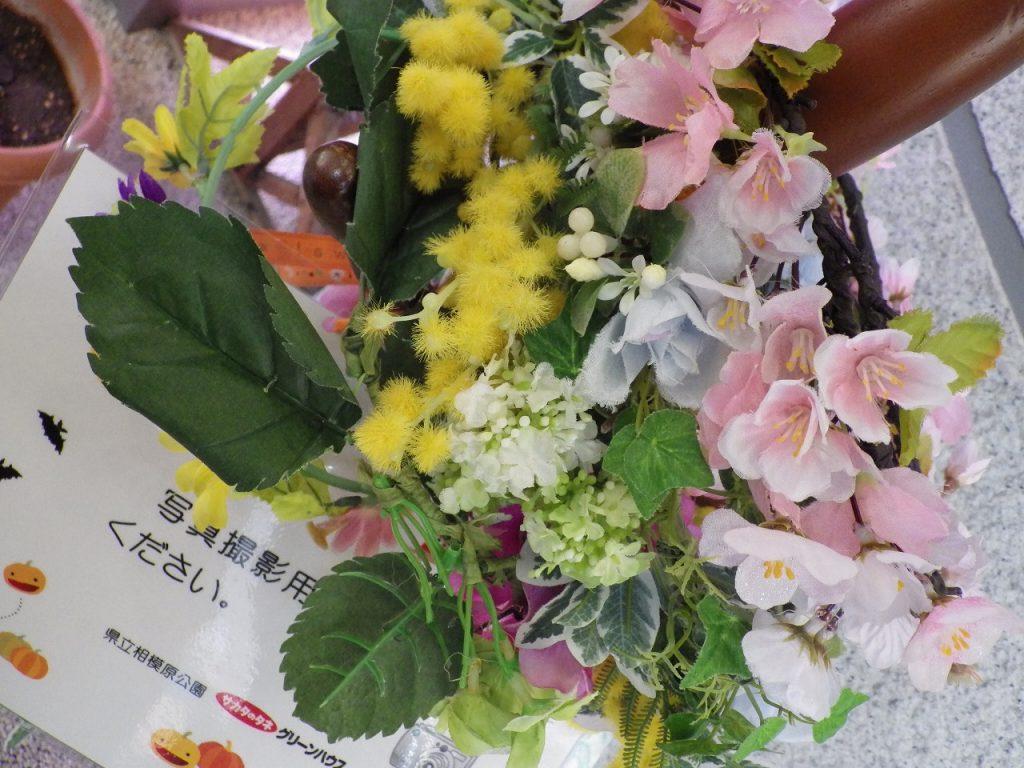 花冠のアップ