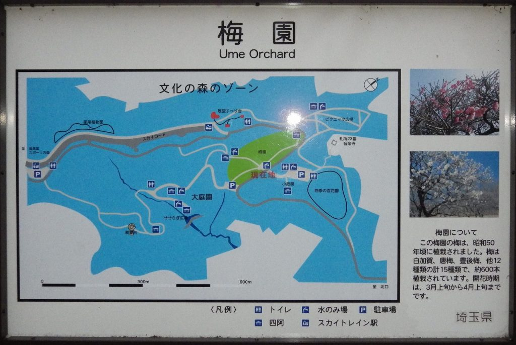 梅園周辺の案内図