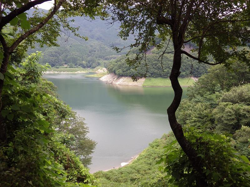 茂みの中から見た草木湖