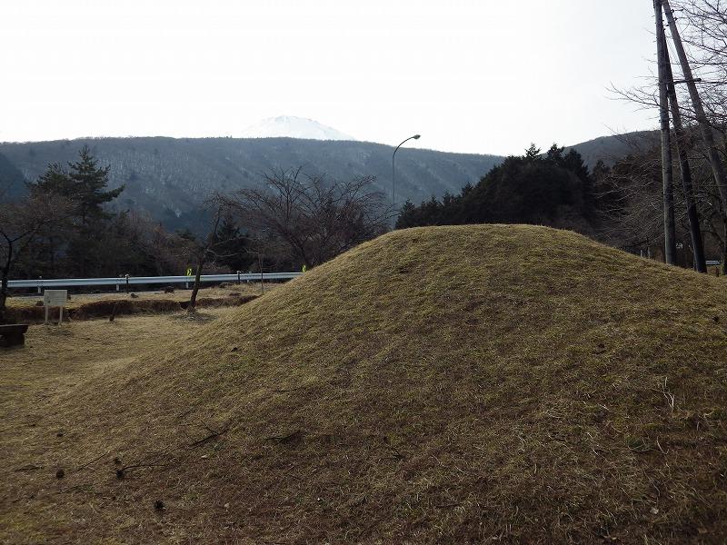 芝富士と、奥に雪の富士山の頭