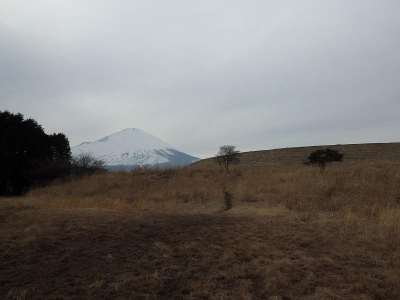 富士山が見えるダム