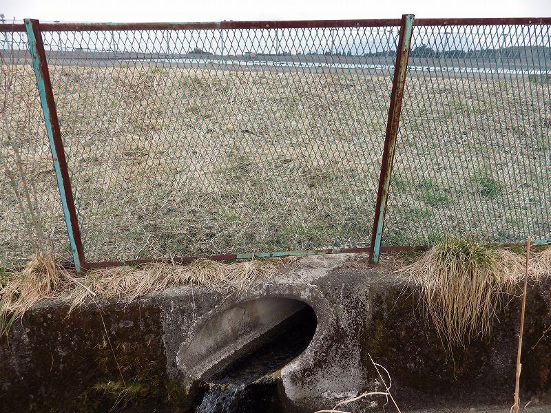 ダムからの水?