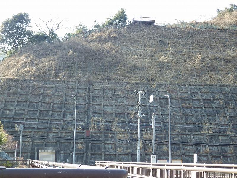 ダムから展望台を眺める