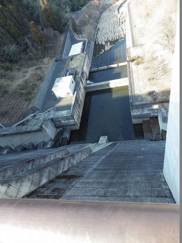 ダムの下を眺める