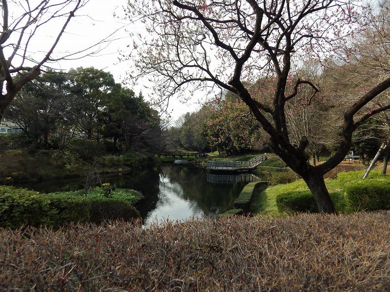 公園に入ってすぐ左の景色