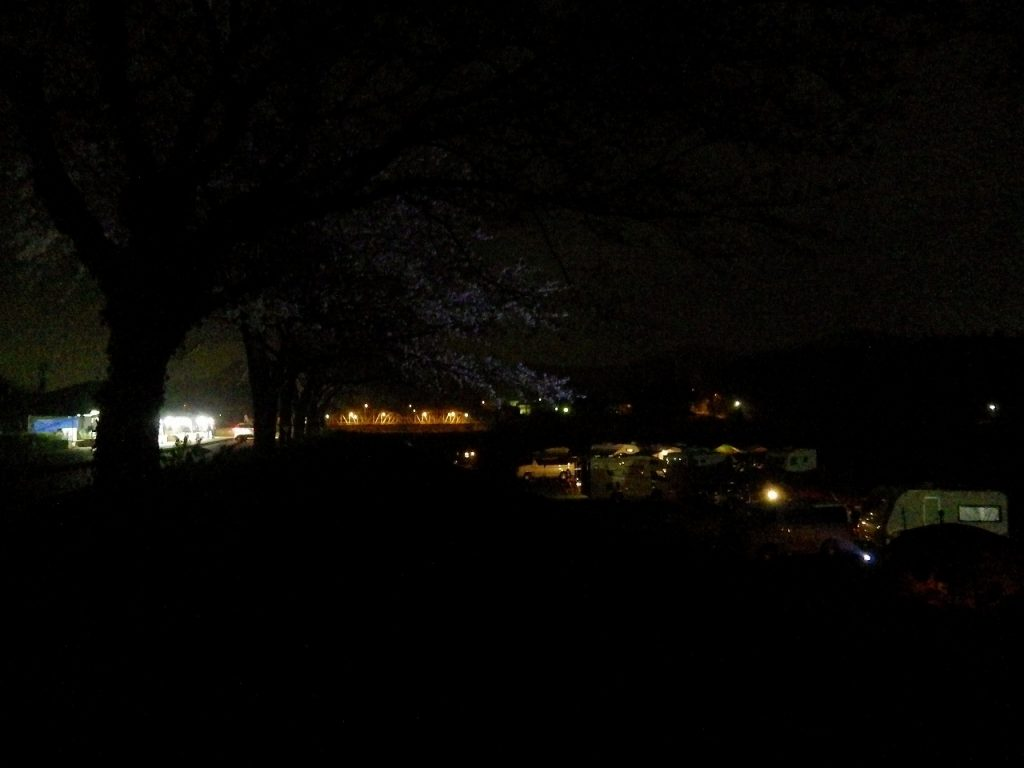 キャンプと夜桜と平山橋