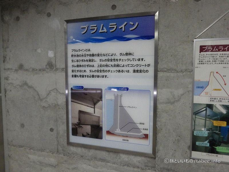 エレベーターの出口横には、プラムラインがあります