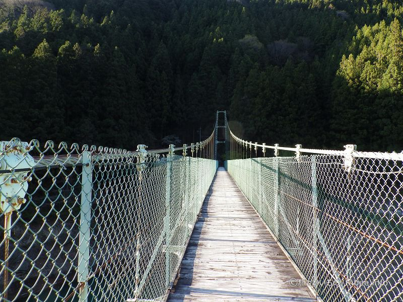 吊り橋中央から向こう岸を眺める