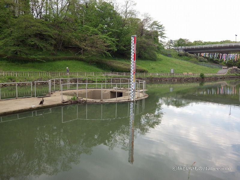 調整池の水が流れ込む場所