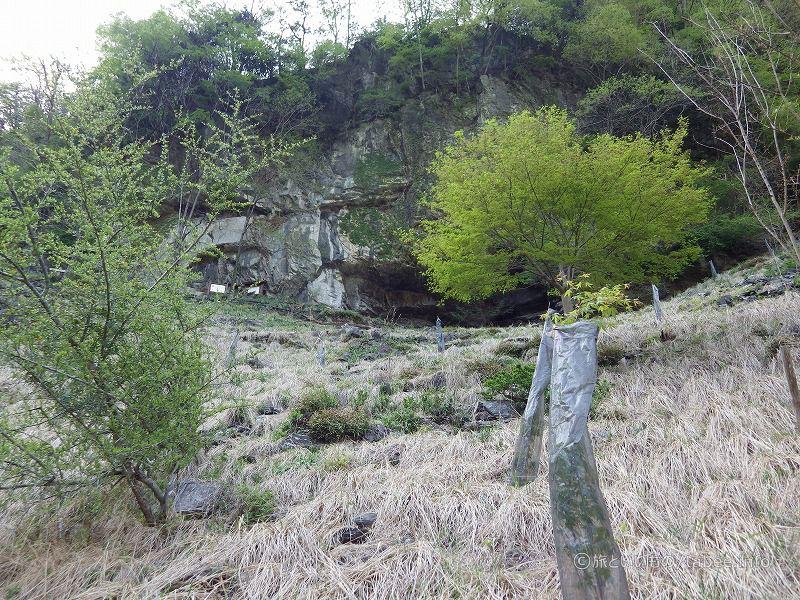 洞窟が見えてきました