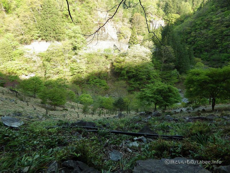洞窟側から見た谷底