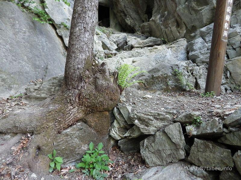 この鍾乳洞に近づくためのあと一歩が険しい