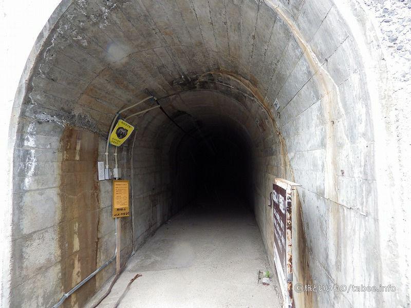 このトンネルを抜けた先で釣ができるようです