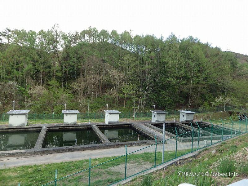 少し下流の浄水場設備
