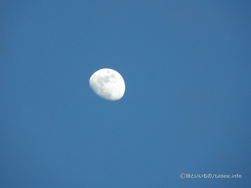 ベンチからは月が見えました