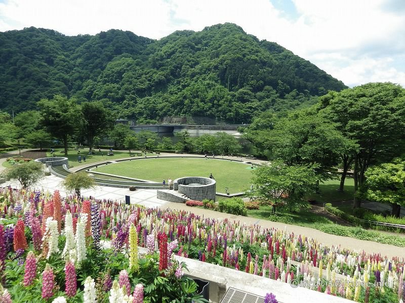 水の苑地からみた城山ダム
