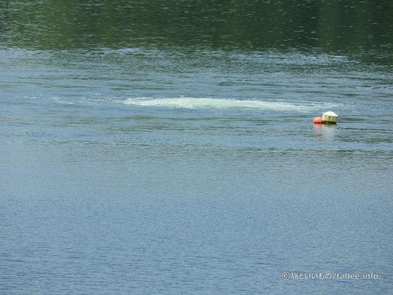 湖の中から何かが湧いているような…