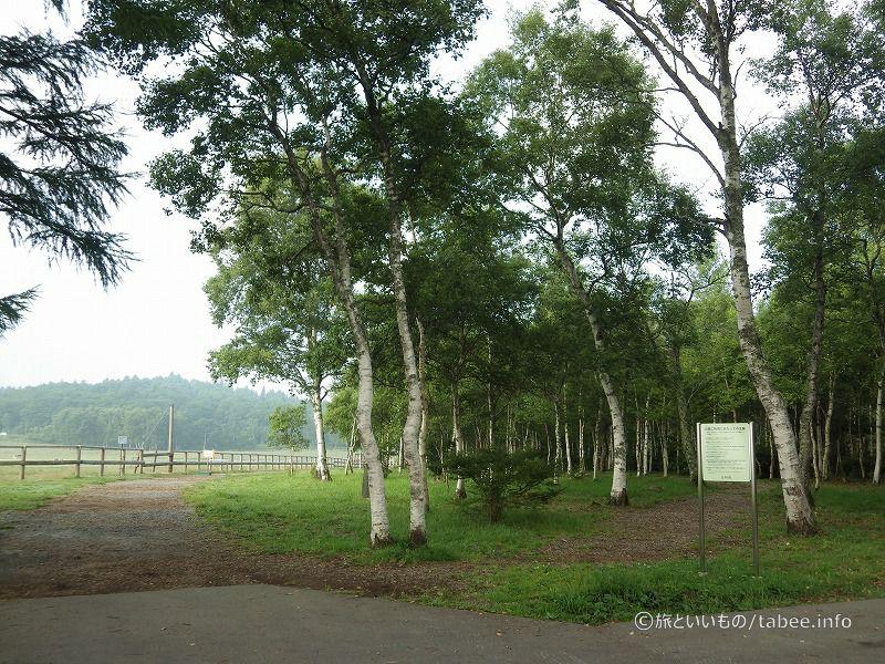 朝日の丘公園