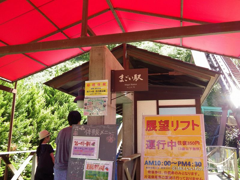 往復350円(3歳以下無料)