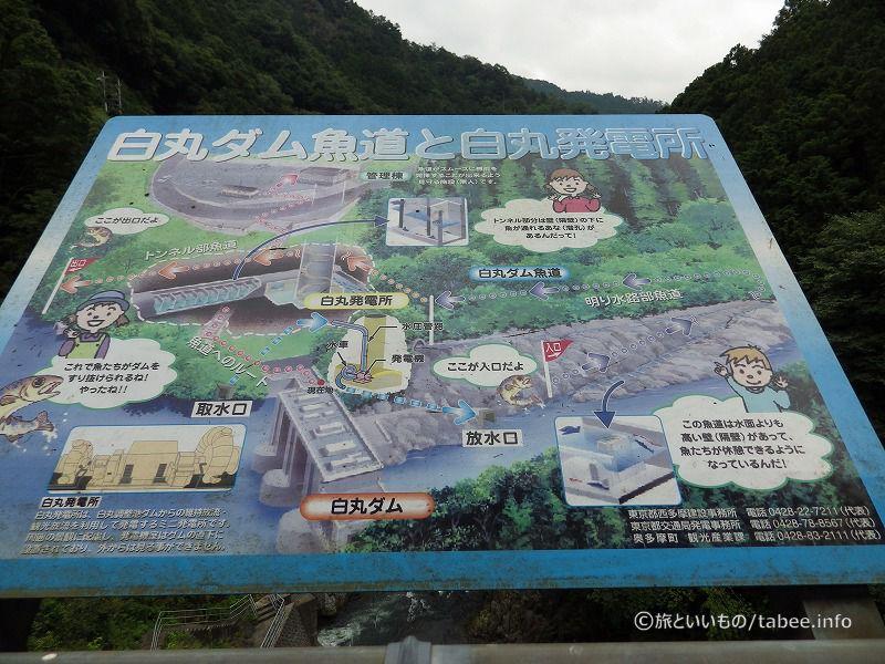 魚道とダムの案内板