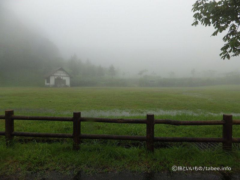 だんだん霧が濃くなってきました