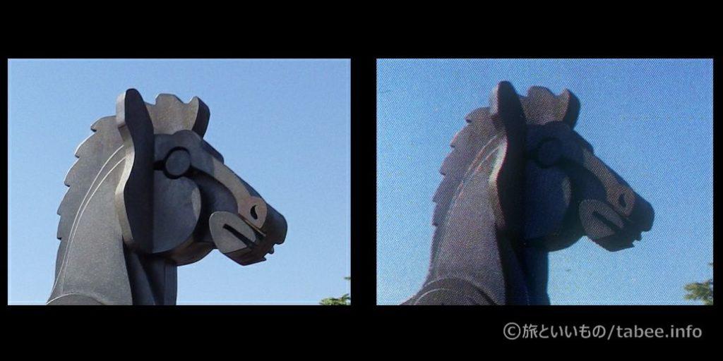 左:元画像 右:印刷画像
