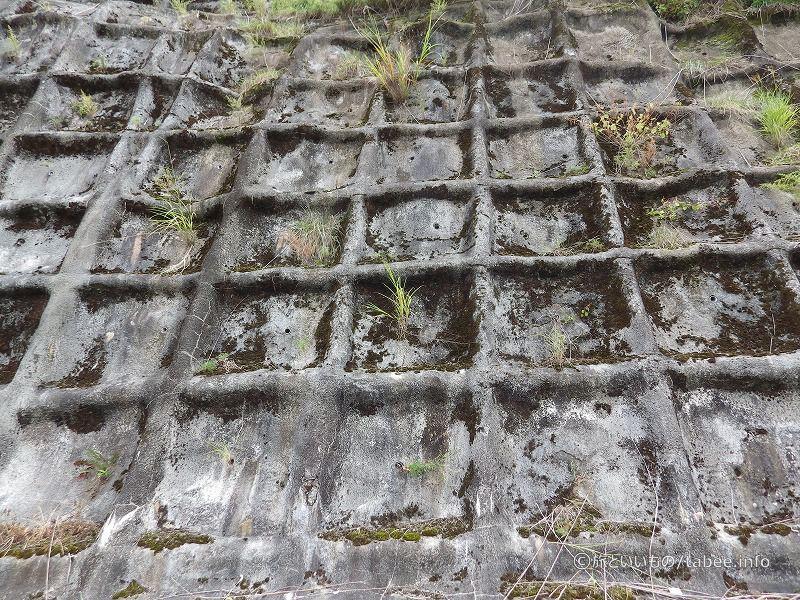 斜面を固めたコンクリート