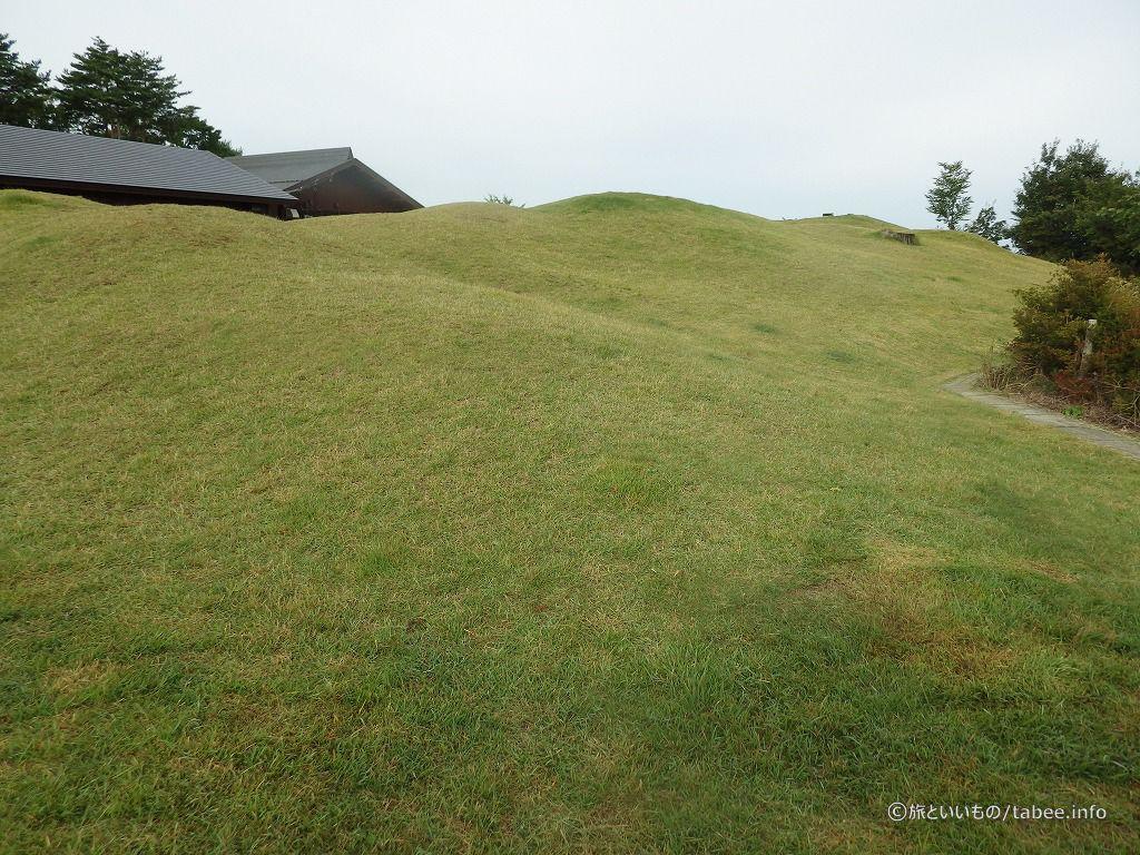 小高い丘があります