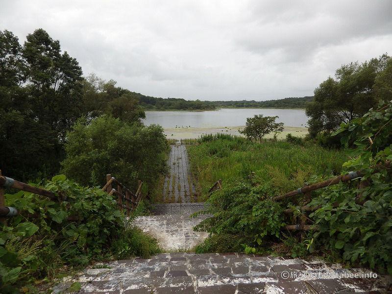化女沼湖へ続く階段