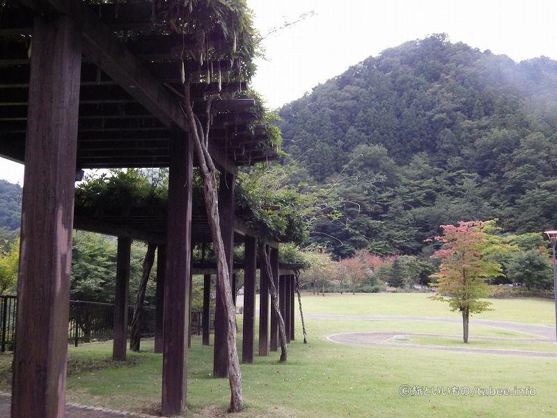 小金沢公園は秋の足音