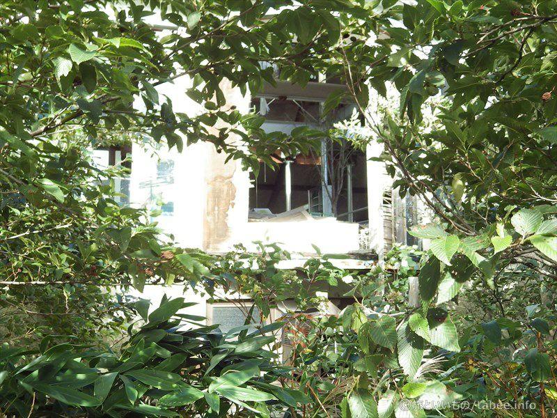 茂みの奥に見える2階部分