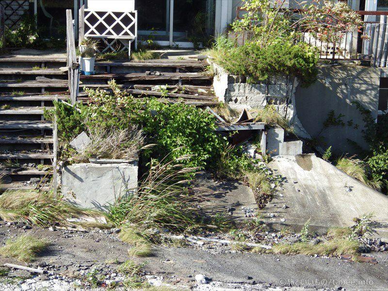 崩れかけの階段と雑草