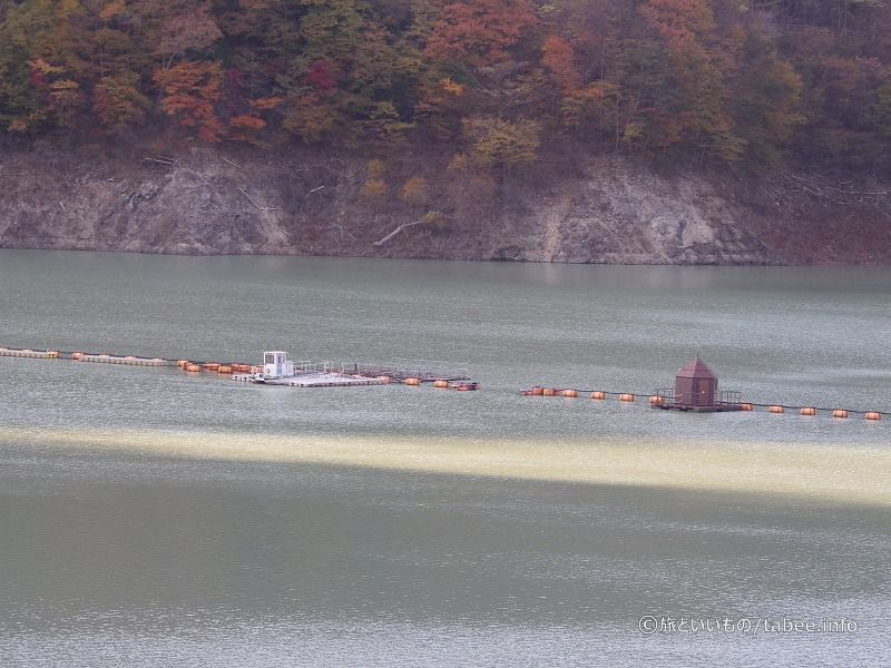 八汐湖に浮かぶ網場と観測装置