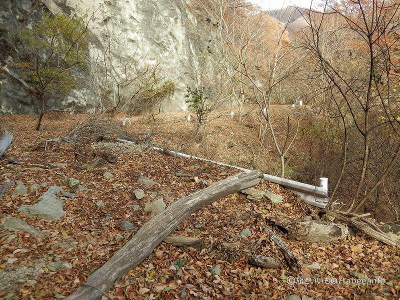 倒木やら落石やら