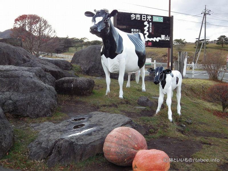 真新しい牛の親子