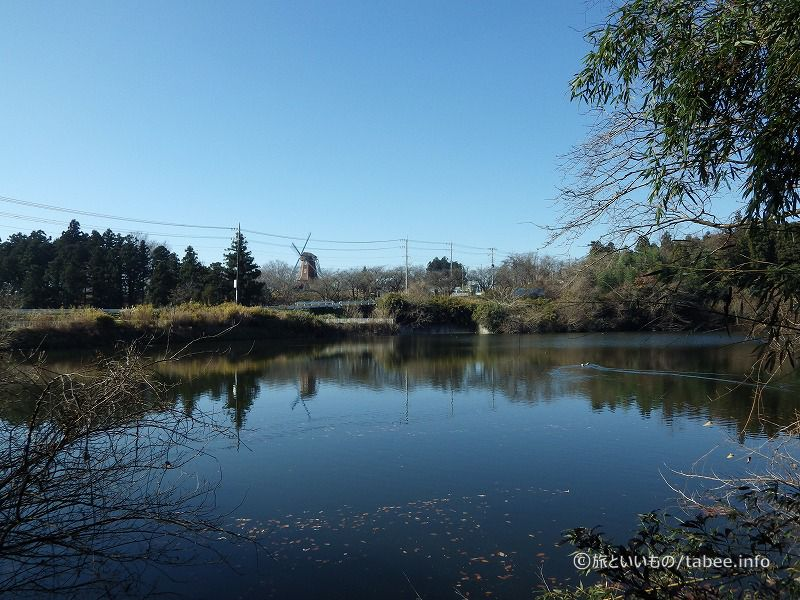 寺沢沼から堤体を眺める
