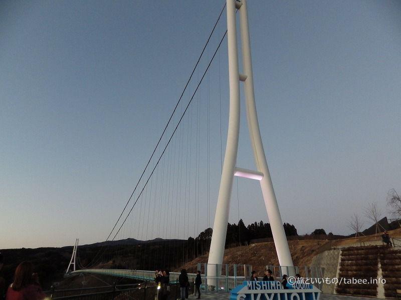 ライトアップされた主塔