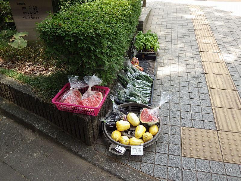 野菜やバジル