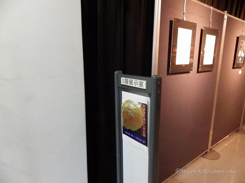 バラの写真展示