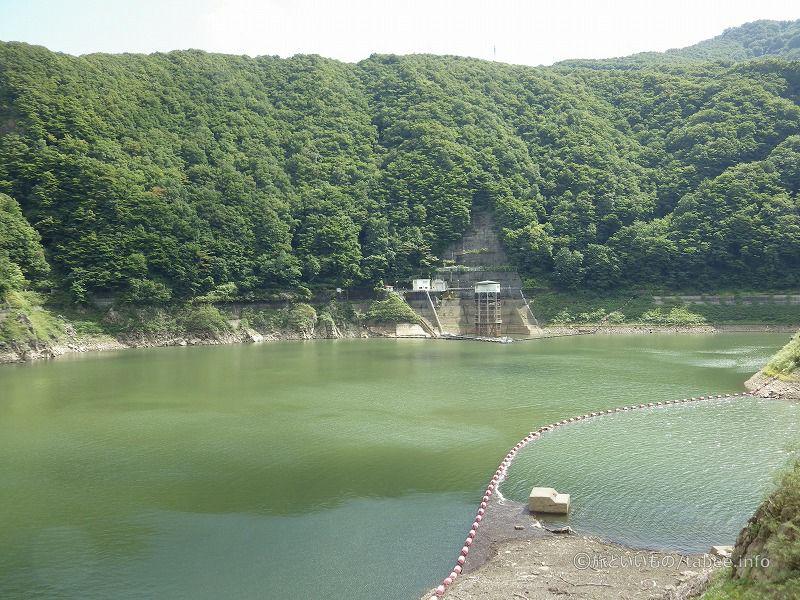 網場と発電取水口が見えます