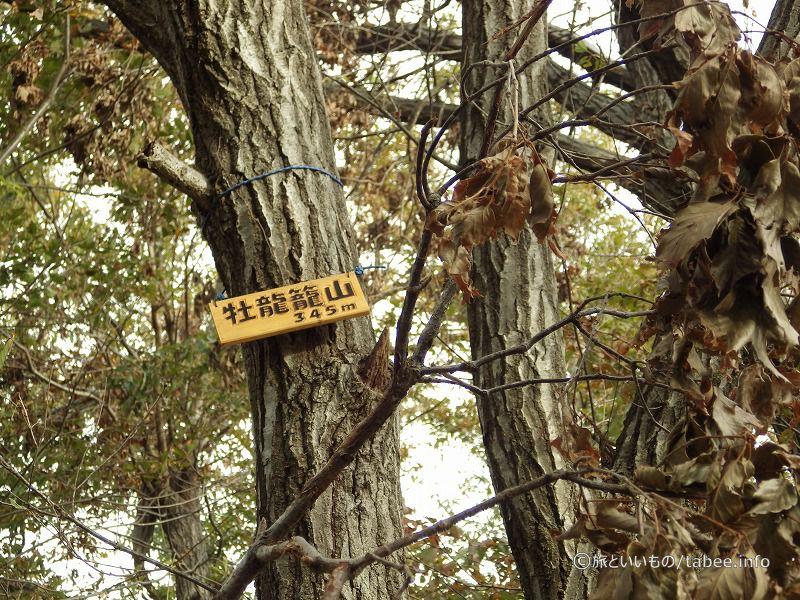 牡竜籠山標高345m