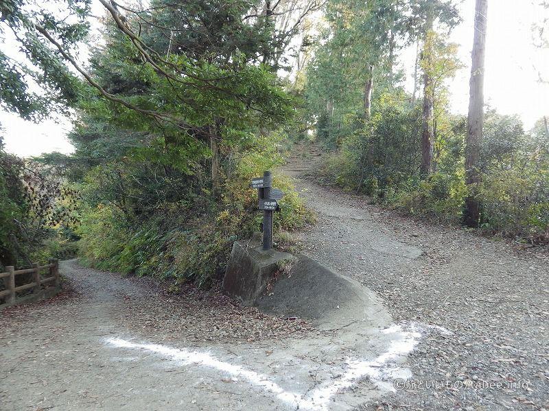 とにかく湖沿いの道を選びます