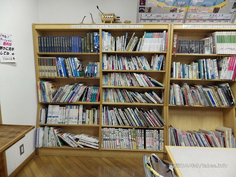 図鑑などの書籍コーナー