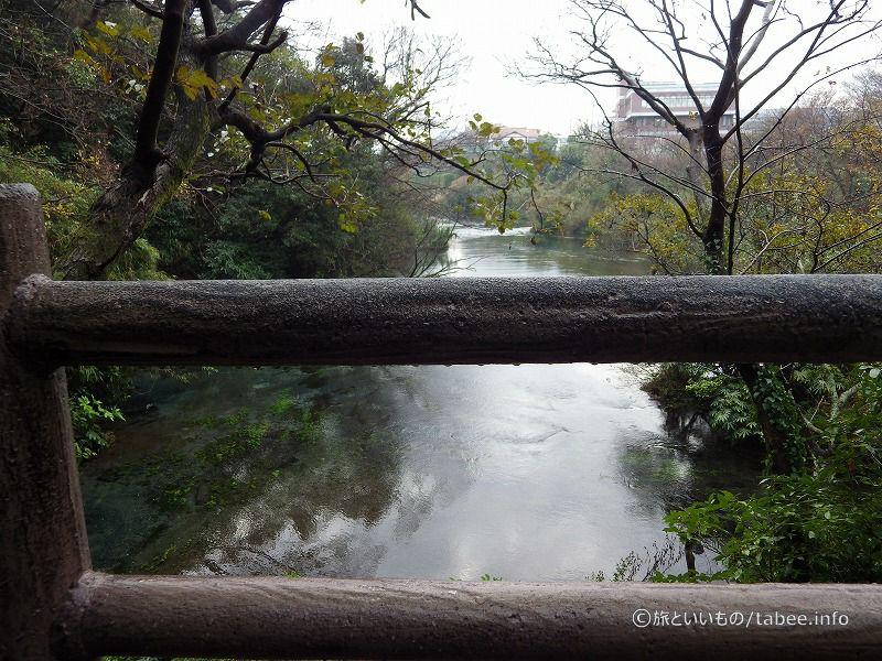 ここは柿田川の最上流部