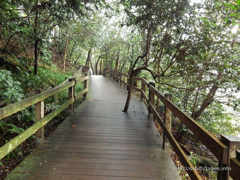 木製八つ橋の心遣い