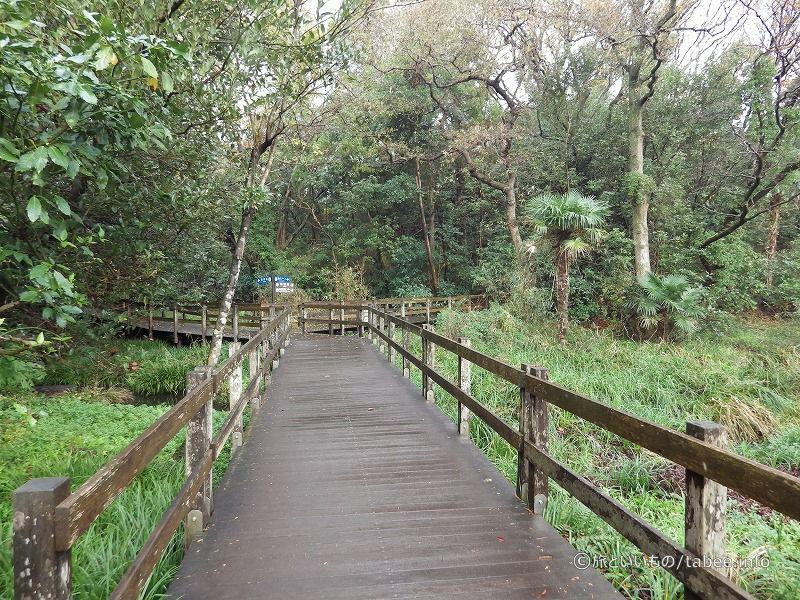 木製八つ橋は駐車場に続く道があります。
