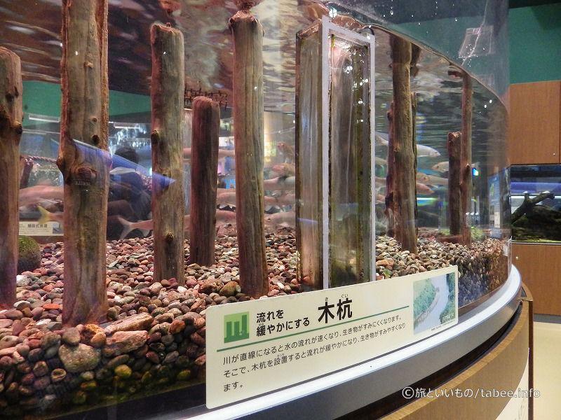 魚の暮らしを考えた人間の工夫